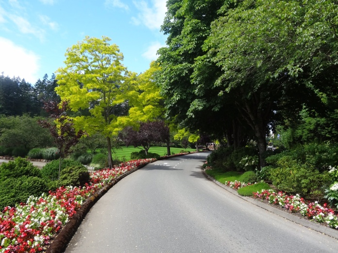 This was the glorious sight that met us as we whizzed down the hill to the Butchart Gardens.